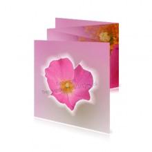 Geboortekaart Meisje Roze
